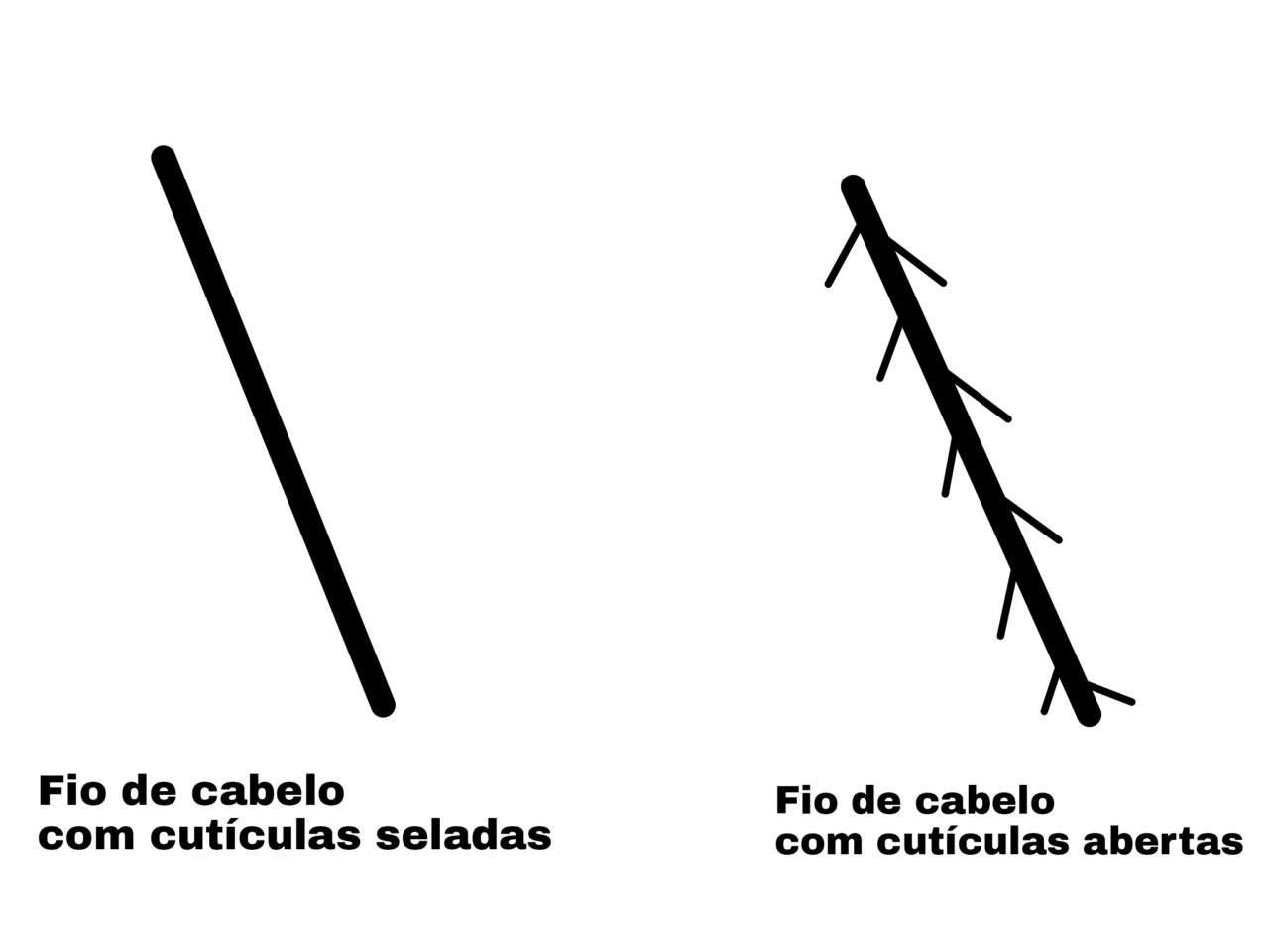 Representação do Fio de Cabelo